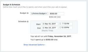 Facebook ads, setting budget and schedule